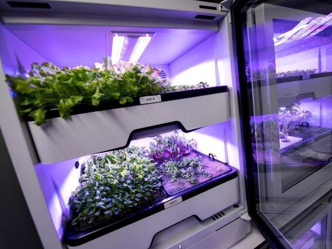 Led Lampen Industrie : Vertical farming»: neue zauberworte der licht industrie lokales